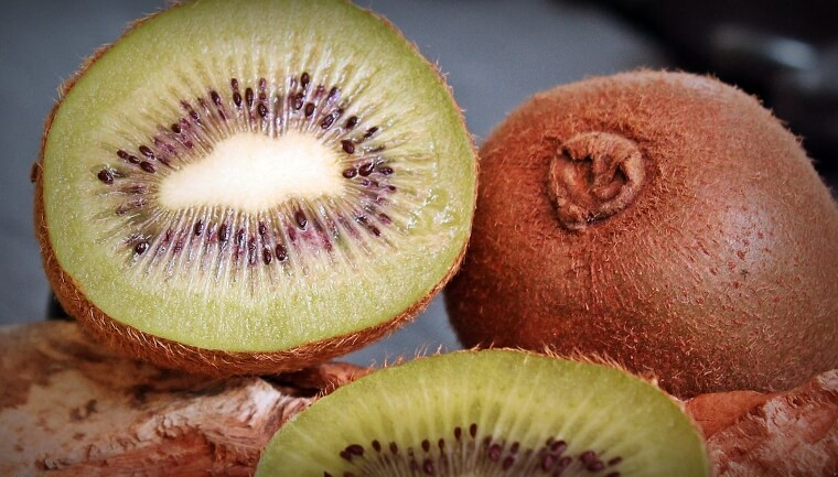Can Dogs Eat Kiwi?