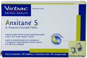 Theanine for Dogs