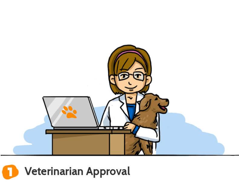 Dog Health Coach 1